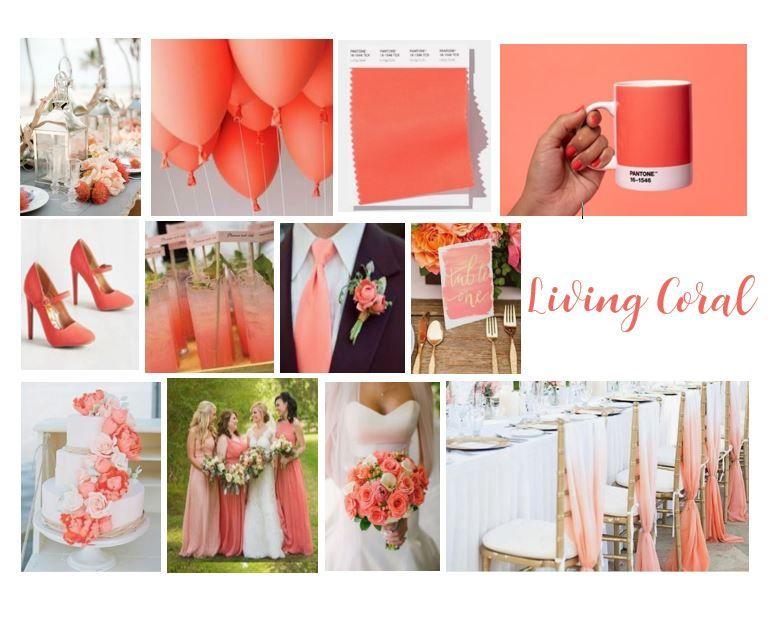 Living corel wedding